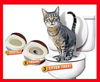 Citi Kitty набор для приучения кошки к унитазу!Акция