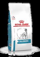 Корм при пищевой аллергии у собак Royal Canin Anallergenic, 3 кг, роял канин