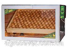 Инкубатор Тандем на 120 куриных яиц 12 вольт