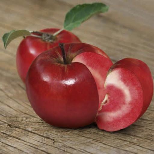 Саджанці яблуні Сирена