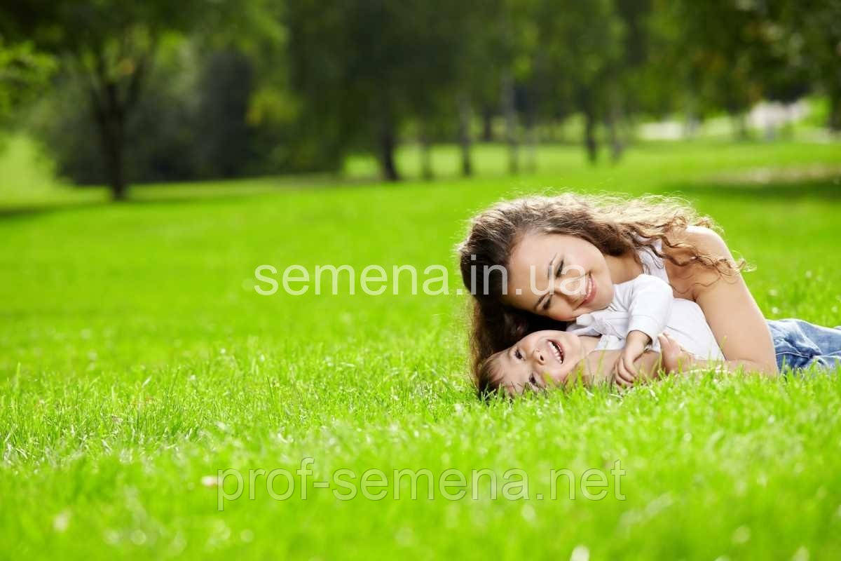 Насіння газонна трава  Посухостійкий- семена газонная трава - 100г.