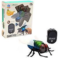 Интерактивная игрушка-робот Муха на радиоуправлении, 11х9х4 см (9921), фото 1
