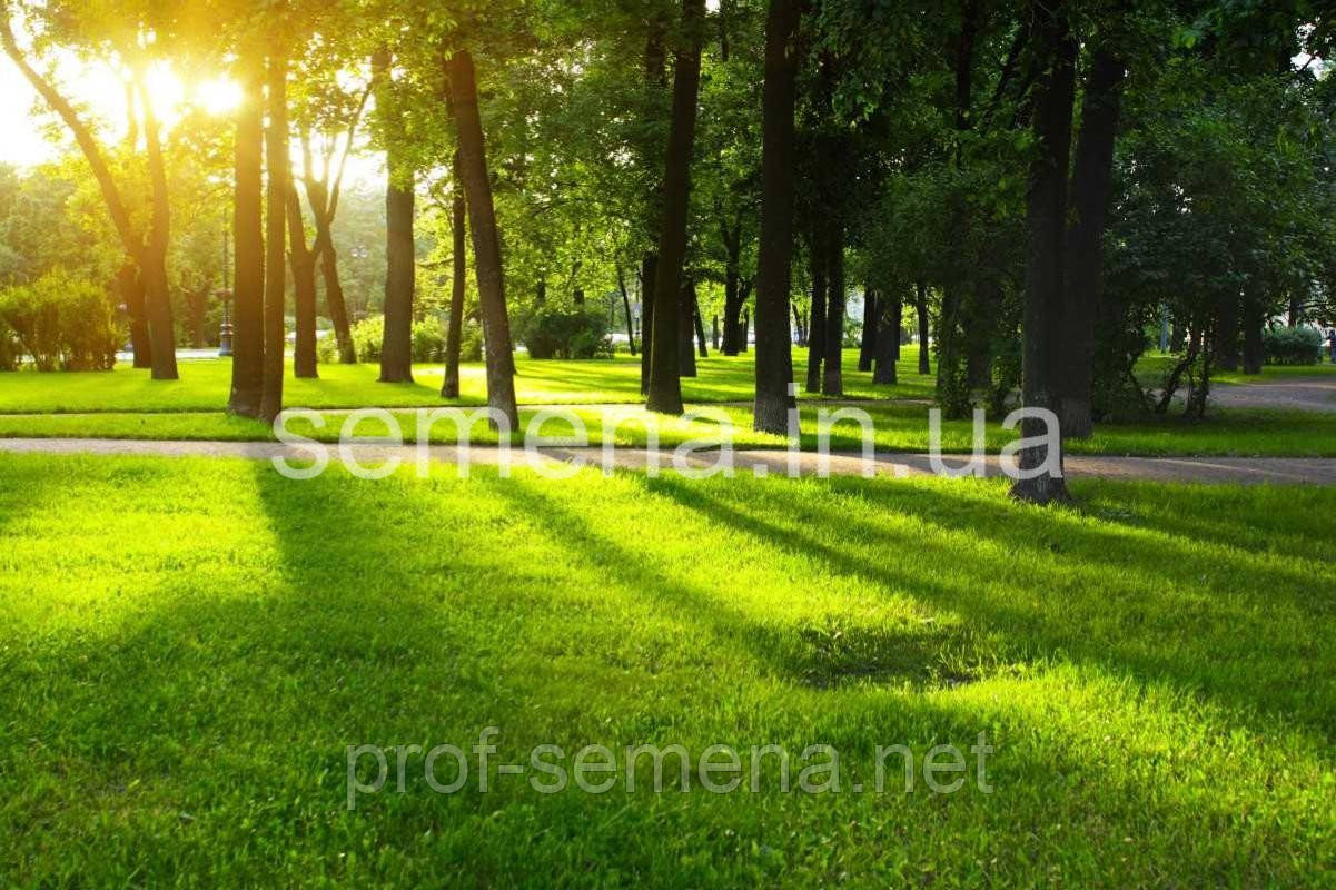 Газонна трава DLF trifolium Тіньова/Паркова 100 г.