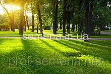 Газонна трава DLF trifolium Тіньова/Паркова 100 р.