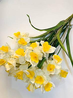 Нарциссы белые ( 60 см), фото 2