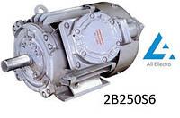 Электродвигатель 2B250S6 45кВт 1000об/мин