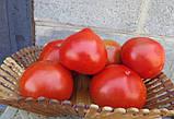 Чимган F1 насіння томату високорослого Clause Франція 250 шт, фото 2