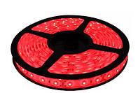 Світлодіодна стрічка SMD2835 60LED 4,8W/m (MTK-300R3528-12 №1) Червоний (1012007)