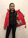 Куртка демісезонна на дівчинку Марі, фото 5