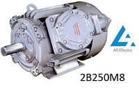 Электродвигатель 2B250М8 45кВт 750об/мин