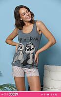 Женские пижамки с шортами  Бурундучки