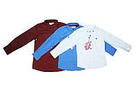 Рубашка детская фирменная отменное качество для мальчиков. Tommy life, фото 1