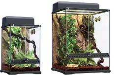 Террариумный набор «Тропический лес» М 45х45х60см