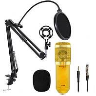 Микрофон студийный M800 со стойкой и ветрозащитой Gold