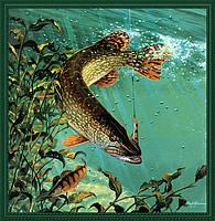 Рыбалка начинается с крючка.