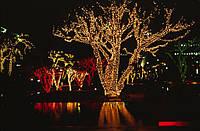 Светодиодная гирлянда на деревья ЛУЧ-5, фото 1