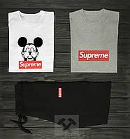 Мужской комплект две футболки + шорты Supreme белый серый