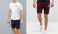 Футболка поло с шортами, Мужской комплект поло и шорты Lacoste белый и красный