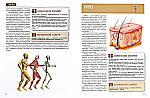 Атлас анатомии для детей, фото 3