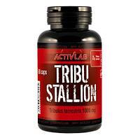Tribu Stallion (60 caps)