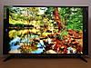 "LED телевизор Sony 56"" (4K UHD/SmartTV/WiFi/DVB-T2), фото 4"