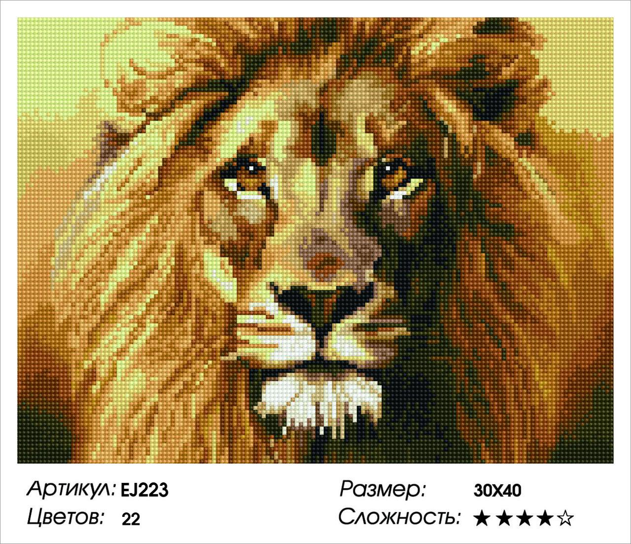 Алмазная живопись 30*40см. EJ223 Царь зверей Rainbow Art , алмазная мозайка