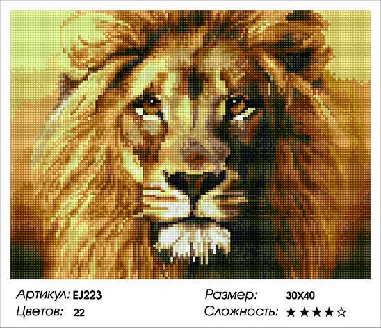 Алмазная живопись 30*40см. EJ223 Царь зверей Rainbow Art , алмазная мозайка, фото 2