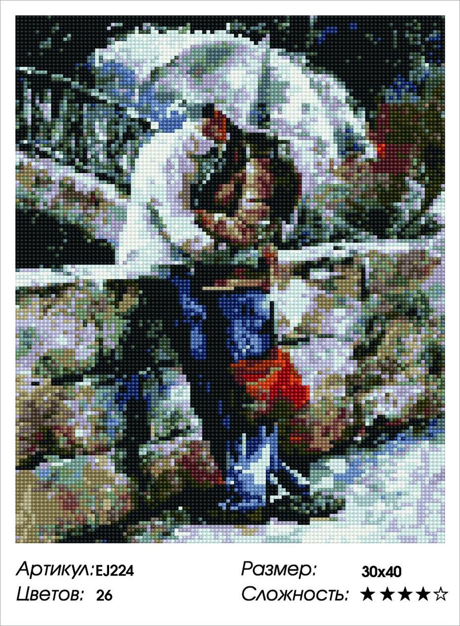 Алмазная живопись 30*40см. EJ224 Двое под зонтом Rainbow Art , алмазная мозайка