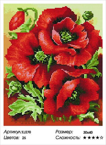 Алмазная живопись 30*40см. EJ270 Красные маки Rainbow Art , алмазная мозайка, фото 2