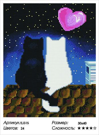 Алмазная живопись 30*40см. EJ315 Любовь на крыше Rainbow Art , алмазная мозайка, фото 2