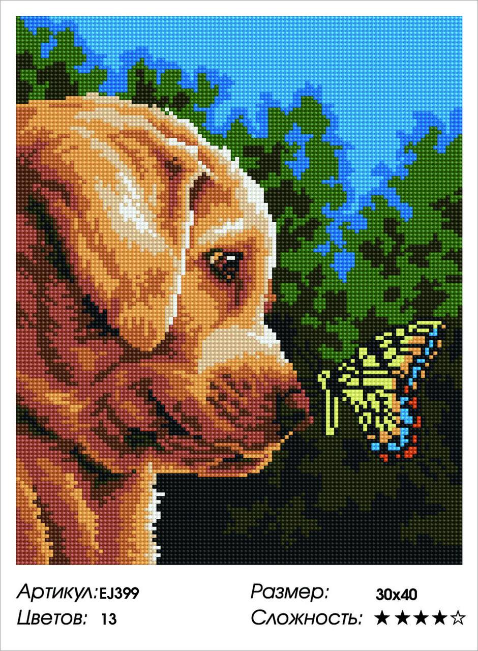 Алмазная живопись 30*40см. EJ399 Щенок и бабочка Rainbow Art , алмазная мозайка