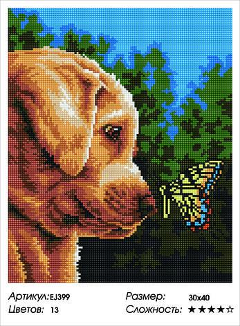 Алмазная живопись 30*40см. EJ399 Щенок и бабочка Rainbow Art , алмазная мозайка, фото 2