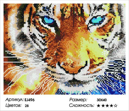 Алмазная живопись 30*40см. EJ496 Взгляд тигра Rainbow Art , алмазная мозайка, фото 2