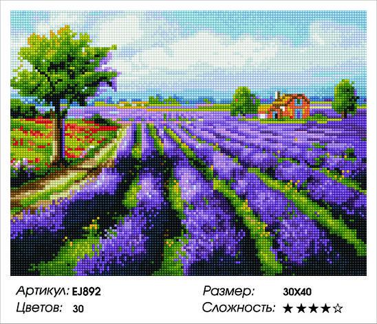 Алмазная живопись 30*40см. EJ892 Прованс Rainbow Art , алмазная мозайка, фото 2
