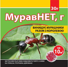 Инсектицид от муравьев Муравнет 30 г Семейный Сад 1476