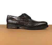 Туфли Baldinini из кожи питона (Балдинини) арт. 39-0002, фото 1