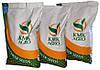 Семена подсолнечника под гранстар Флокс (КМК-Агро Екстра), насіння соняшника стійке до захворювань/сонях до