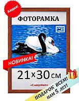 Фоторамка пластиковая А4 21х30, коричневая. Рамка для фото дипломов сертификатов грамот. Код 1513-120