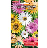 Остеоспермум смесь, многолетнее растение высотой 30-45см, семена цветы 0.1г