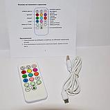 Силиконовый ночник «Енот» с пультом ДУ  3DTOYSLAMP 9 цветов, фото 9