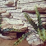 Фон для террариума - каменные ступеньки с укрытием, фото 2