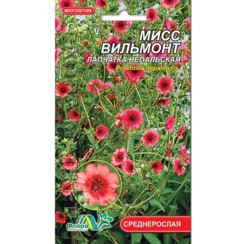 Лапчатка Непальская Мисс Вильмонт, многолетнее растение высотой до 50 см, семена цветы 0.05 г