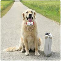 GPS ошейник для собак TKSTAR TK909