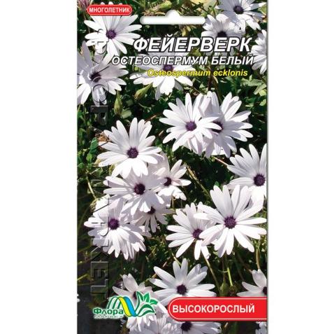 Остеоспермум білий Феєрверк, багаторічна рослина висотою 30-45 см, насіння квіти 0.1 г