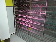 Ручная линия окраски ONYX изделий L≤4,4м, фото 3