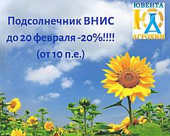 Скидка на подсолнечник ВНИС -20%!!!!!!!!!!!!!