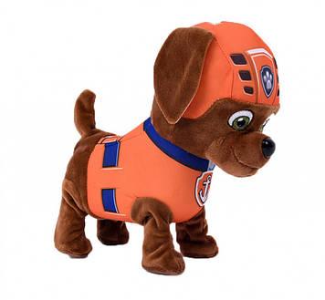 Інтерактивна іграшка щенячий патруль Зума бігає співає пісеньку виляє хвостиком