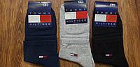 """Жіночі стрейчеві шкарпетки в стилі """"Tommy W"""" Туреччина 36-40, фото 1"""