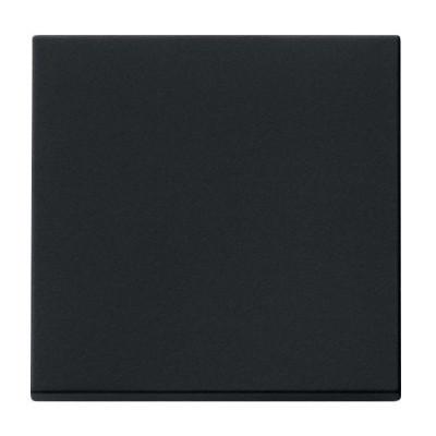 Клавиша 1-я GIRA System 55 чёрный матовый