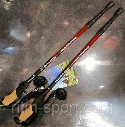 Палки для скандинавской ходьбы Exponent (55 см - 135 см), фото 2
